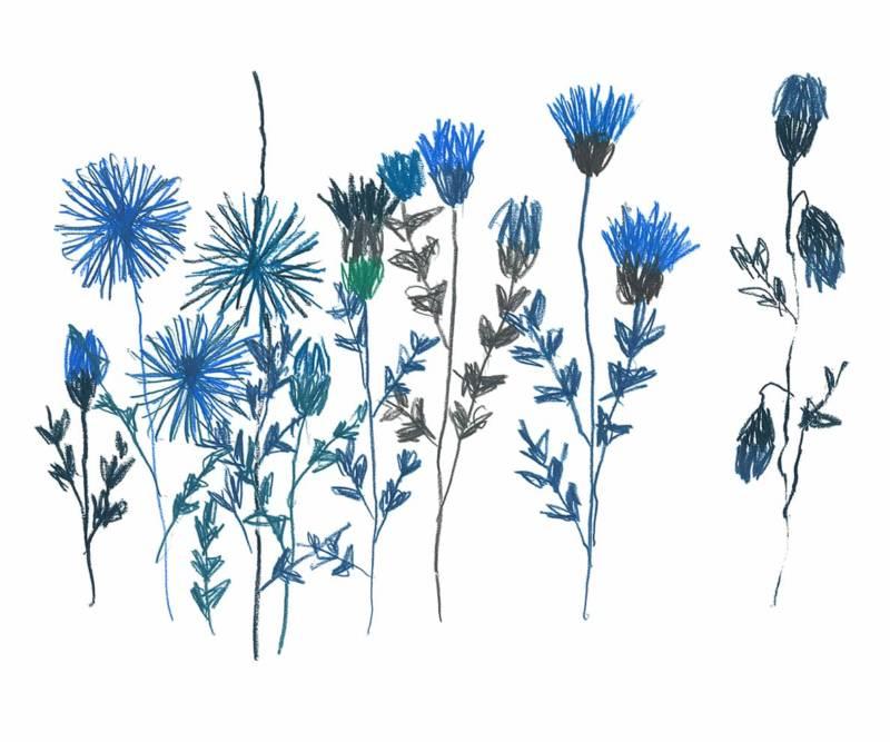 Décor mural sur-mesure Bleuets, version contemporaine. 300 x 350 cm de largeur maximum. ©Au Fil des Couleurs