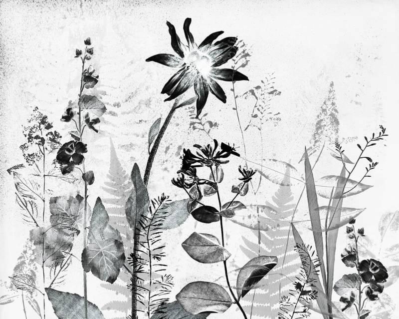 Papier peint panoramique Couture Flower Press Mural. Intissé. Largeur 300 cm. ©Graham & Brown