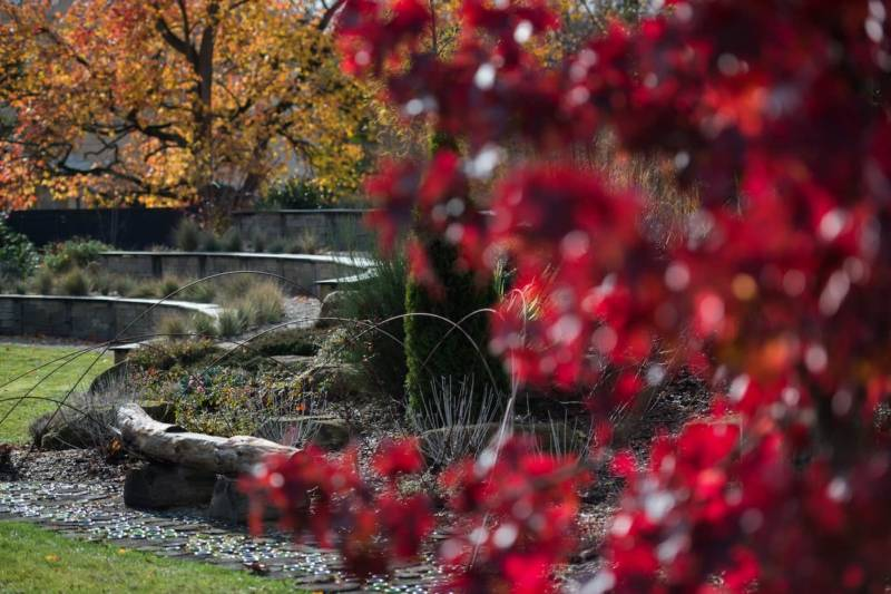 Un jardin à énergie positive 1