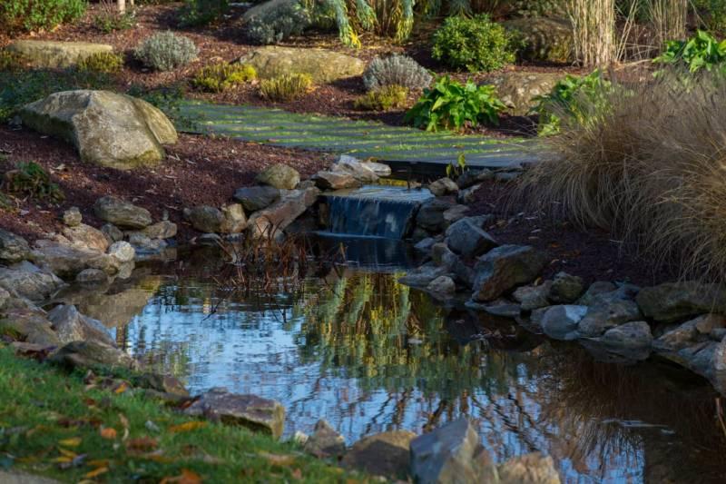 Un jardin à énergie positive 2