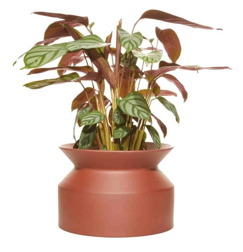 Spool planter, pot en terre cuite terracotta, avec canal d'irrigation pendant 1 mois. 4 dimensions. ©Boskke