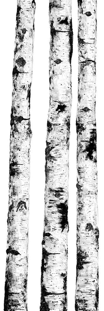 Ritmi – Décor composé de 3 dalles